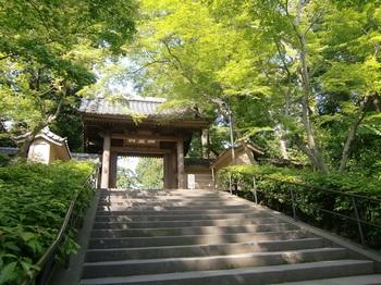 円覚寺2.jpg